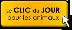 clic Animaux
