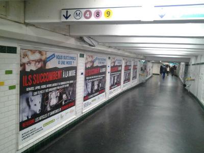 strasbourg Saint Denis, Campagne anti fourrure, Clic Animaux