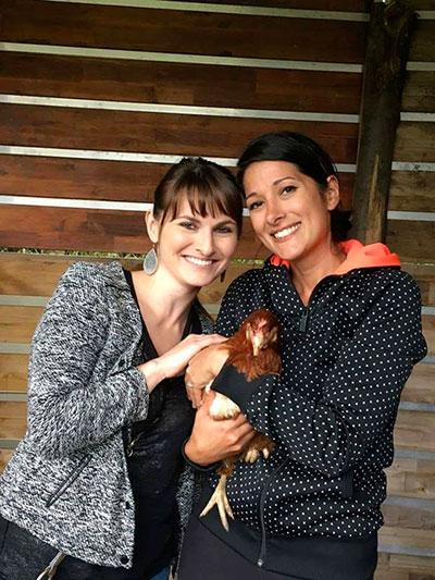 sauvetage 200 poules, Gaec du Perrat, Clic Animaux, dignité animale