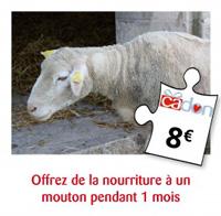 offrez un an de nourriture à un mouton pendant 1 mois
