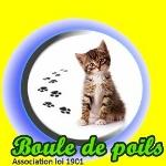 BOULE_DE_POILS