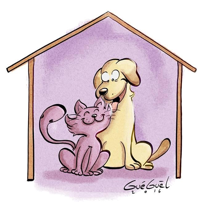 SOSASSO_AVEC_OU_SANS_TOIT
